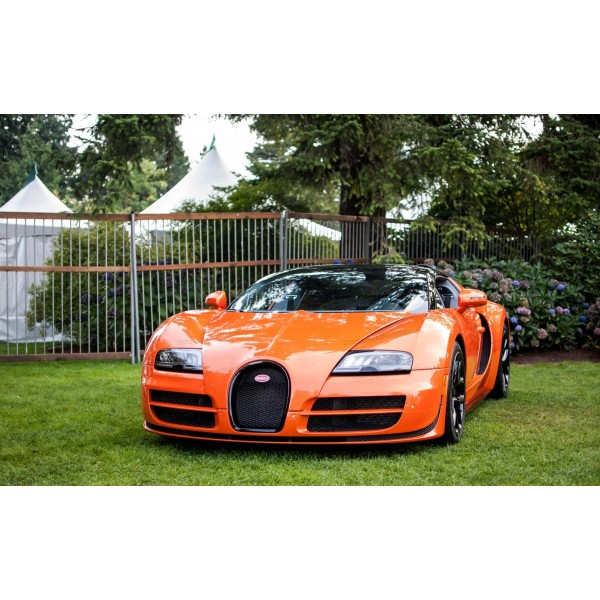 Bugatti Veyron Vitesse: Bugatti Veyron 16.4 Grand Sport Vitesse SE 2012, RASTAR 1